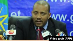 Getachew Reda, Ethiopia Government Spokesman