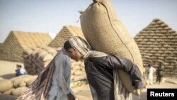 کاهش واردات آرد از پاکستان به افغانستان، ضربۀ شدید را بر تجارت آرد در پاکستان وارد کرده است