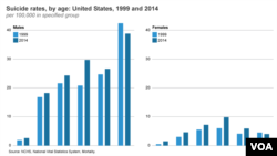 Suicide rates, US, 1999 and 2014