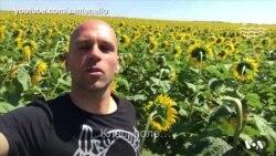 """Американець про сільське життя в Україні: """"Справжня простота, справжня краса"""". Відео"""