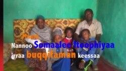 Seenaa Maatii Oromoo Jigjigaadhaa Ari'amanii