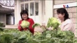 Món Kimchi của Bắc Triều Tiên được công nhận di sản thế giới