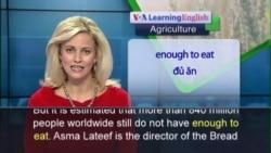 Anh ngữ đặc biệt: Ending Hunger (VOA-Ag)