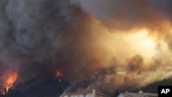 26일 콜로라도주 왈도 캐년에서 주택가로 번지는 산불.