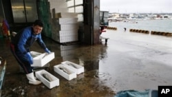 Seorang pekerja di pasar ikan mengangkat hasil tangkapan ikan yang diperolehnya hair ini di pelabuhan Oma di Aomori, utara Jepang (Foto: dok). Tokyo Electric Power Co. menyatakan telah mendeteksi adanya kadar 740 ribu becquerels per kilogram cesium radioaktif pada seekor ikan yang ditangkap di dekat PLTN Fukushima, 21 Februri lalu.