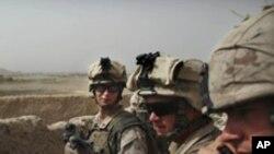 افغانستان : با وردی شخص کی فائرنگ سے چھ نیٹو فوجی ہلاک