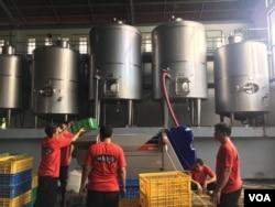Pekerja Sababay Winery mengolah anggur.