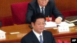 全国人大常委会副委员长王兆国