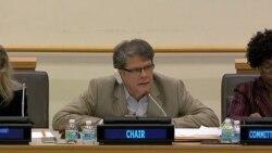 ONU busca descolonizar Puerto Rico