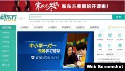 新东方网站截图