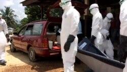Ebola Yearender