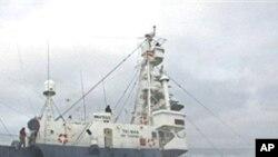 جاپان کی انٹارکٹکا میں وہیل مچھلی کے شکار کی تیاری