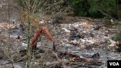 Team SAR mencari korban di antara puing-puing rumah yang hancur akibat tanah longsor di kota Oso, negara bagian Washington (28/3).