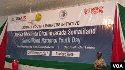 Maalinta dhallinyarada Somaliland