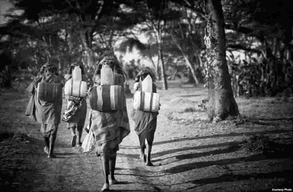 Masaaï women walk in Kenya three miles to get drinking water (Photo by Patrick Jérôme/VOA reader)