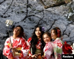 Kimono-clad women from Thailand take selfies among blooming cherry blossoms at Ueno Park in Tokyo, Japan, March 27, 2021. (REUTERS/Kim Kyung-Hoon)