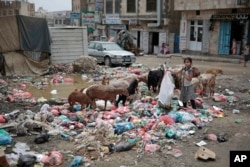 FILE - A girl scavenges at a garbage dump in a street in Sana'a, Yemen, Jul. 26, 2017.
