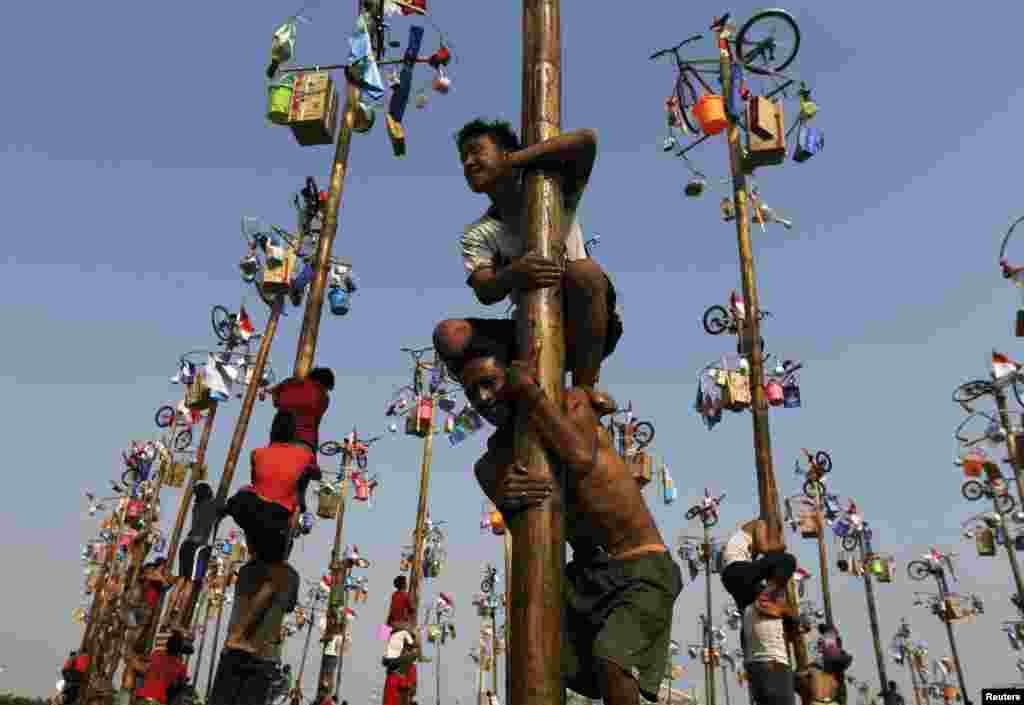 """Participants react as they hold on to a greased pole during the """"Panjat Pinang"""" event organized in celebration of Indonesia's 69th Independence Day at Ancol Dreamland Park in Jakarta."""