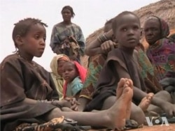 De Capua report on Sahel food crisis