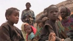 De Capua report on Sahel food crisis