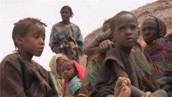 Conflict in Mali Aggravates Sahel Food Crisis