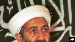 القاعدہ نے سب سے زیادہ نقصان مسلمانوں کو پہنچایا : تجزیہ کار