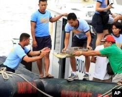 """这张摄于2014年5月10日的照片显示,菲律宾国家警察海警大队成员在菲律宾西部的普林萨塞港从中国渔船""""琼琼海0903号""""上卸下一只死掉的绿海龟。"""