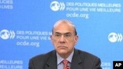 经济合作与发展组织秘书长古里亚在11月17日会议上