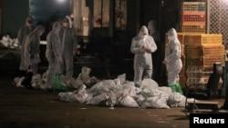2013年4月中國衛生工作人員在上海一處農貿批發市場收集裝死雞的袋子。