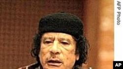 卡扎菲取消住帐篷计划令新泽西人倍感宽慰