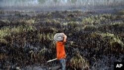 Seorang petugas bersiap memadamkan kebakaran hutan di Ogan Ilir, Sumatera Selatan (17/9). (AP/Tatan Syuflana)