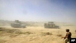 팔루자로 진격하는 이라크 정부군
