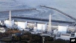 日本福岛第一核电厂(资料照片)