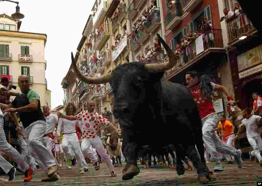 تصویری از حمله گاو وحشی در فستیوال ۸ روزه گاوبازی سن فرنین اسپانیا