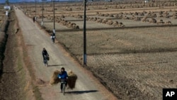 FILE - North Korean farmers pass along a road past farm fields at a collective farm near the town of Sariwon, North Korea.