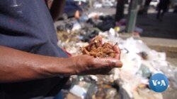 Hungry Venezuelans Pick Through Garbage for Food