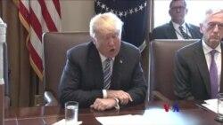 川普簽署鋼鋁關稅宣言 加拿大墨西哥受豁免
