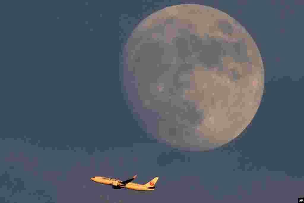 بلند شدن یک هواپیمای مسافربری شرکت هواپیمایی ژاپن از فرودگاه هاندا، در آستانه بازیهای به تاخیر افتاده المپیک تابستانی ۲۰۲۰ توکیو