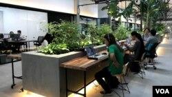 胡志明市的一個為小企業服務的工作共享空間(美國之音阮河拍攝)
