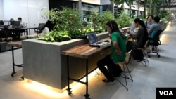 Small businesses take advantage of co-working spaces like this one, in Ho Chi Minh City, but many haven't taken steps to protect themselves online. (Photo: H. Nguyen / VOA)