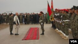 Avganistanske i međunarodne snage