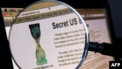 Wikileaks'e Banker Desteği