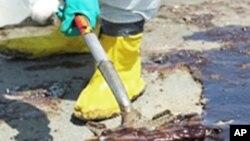 Maré Negra: Acções da BP Descem