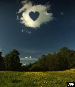 """Ngay cả """"tình yêu"""" cũng có thể là một môn trong chương trình học của một sinh viên"""