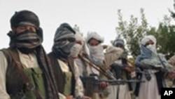 طالبانو په جنوب کې ۳۰ تنه افغانان وژلي