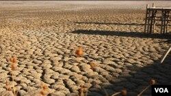 jazmorian wetland sout iran drought