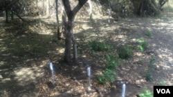 Some landmines marked on a patch of land in Zimbabwe's Mukumbura communal lands.