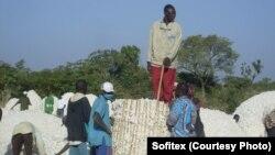 La Sofitex, la société des fibres textiles du burkina, a organisé des fora avec les cotonculteurs. Photo prise en janvier 2011 par Sofitex.