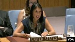 میشل جین سیسان، معاون نماینده دایمی ایالات متحده در ملل متحد