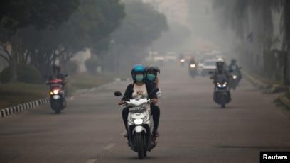 Penderita Ispa Akibat Karhutla Di Sumatera Dan Kalimantan Mencapai 919 Ribu Orang